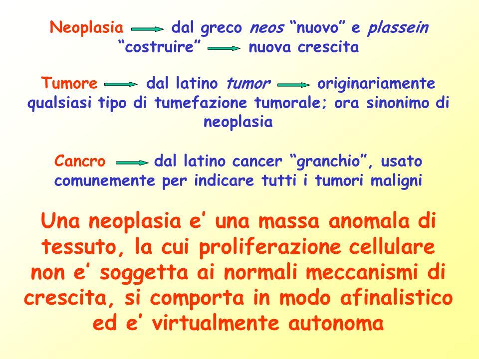 Mutazioni genetiche Displasia Carcinoma in situ Carcinoma invasivo Carcinoma metastatizzante Processo multifasico