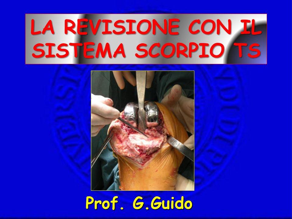 LA REVISIONE CON IL SISTEMA SCORPIO TS Prof. G.Guido