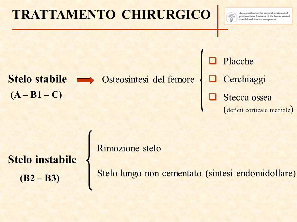 Stelo instabile Stelo stabile Osteosintesi del femore Rimozione stelo Stelo lungo non cementato (sintesi endomidollare) TRATTAMENTO CHIRURGICO (A – B1