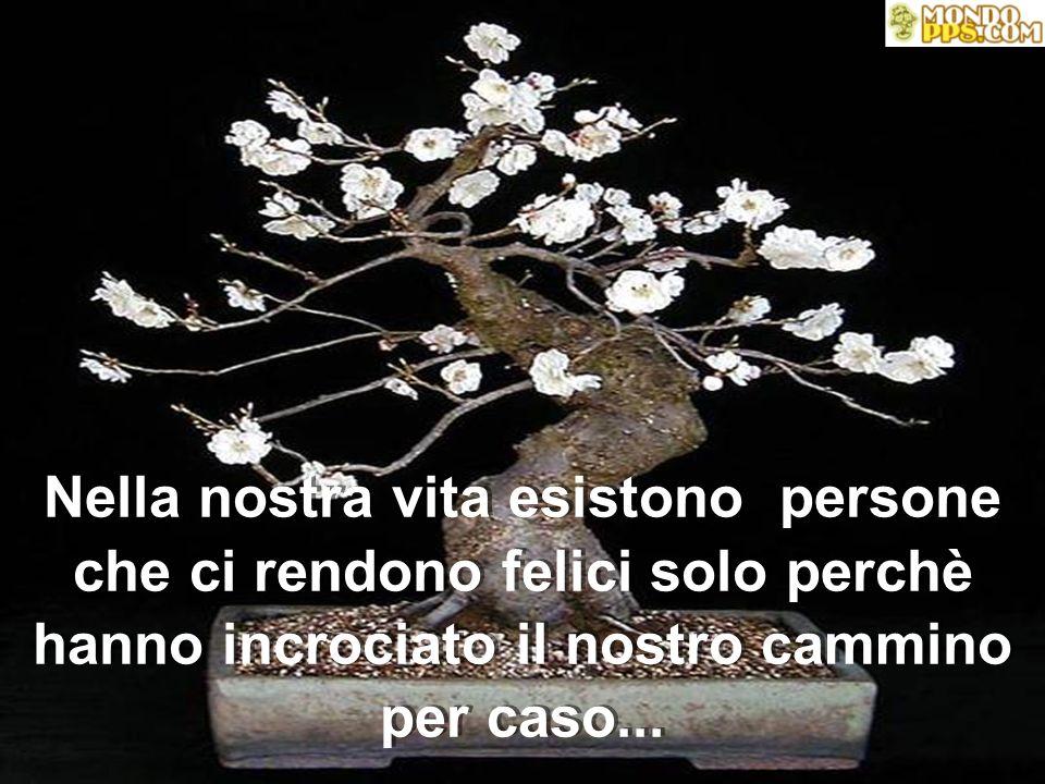 IL MIO ALBERO DI AMICI Autore: Jose L. Borges Musica: Toscana Magic, di Acama Traduzione: Lulu