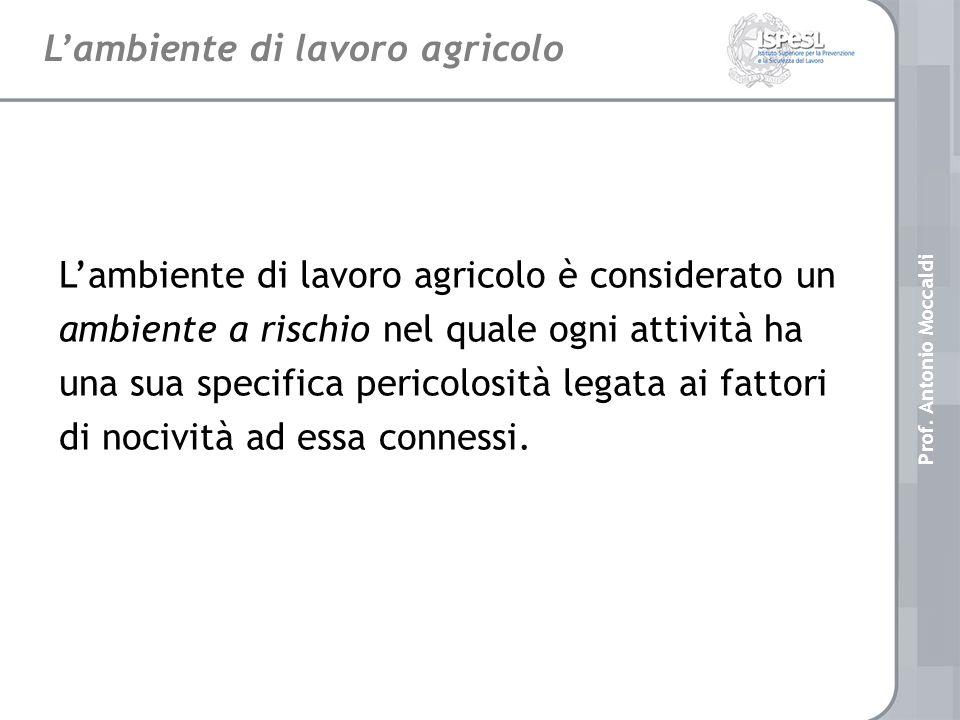 LINEE DI RICERCA - ISPESL Piano triennale di attività 2005 - 2007 Prof.