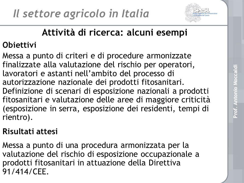Il settore agricolo in Italia Attività di ricerca: alcuni esempi Obiettivi Messa a punto di criteri e di procedure armonizzate finalizzate alla valutazione del rischio per operatori, lavoratori e astanti nellambito del processo di autorizzazione nazionale dei prodotti fitosanitari.