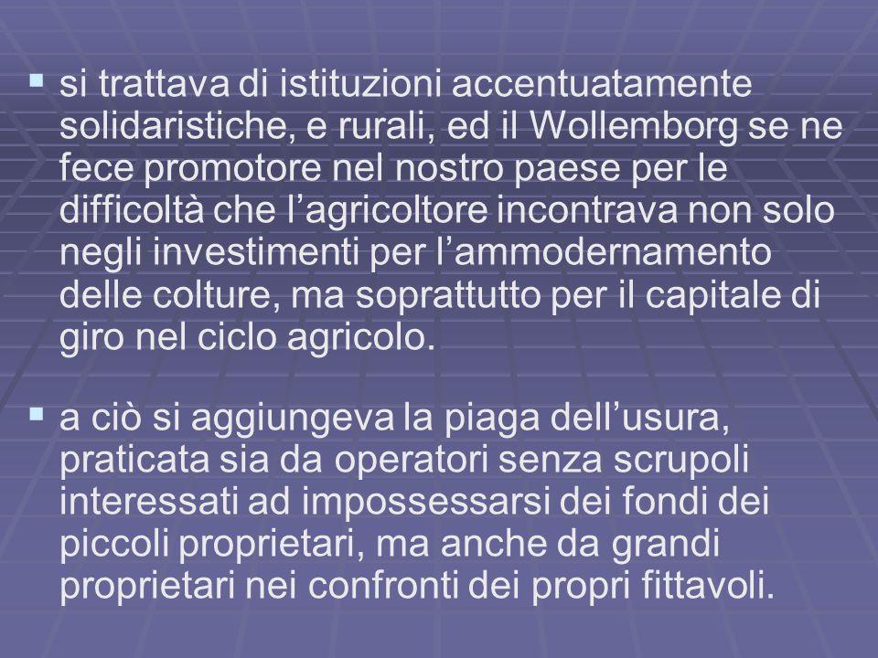 si trattava di istituzioni accentuatamente solidaristiche, e rurali, ed il Wollemborg se ne fece promotore nel nostro paese per le difficoltà che lagricoltore incontrava non solo negli investimenti per lammodernamento delle colture, ma soprattutto per il capitale di giro nel ciclo agricolo.