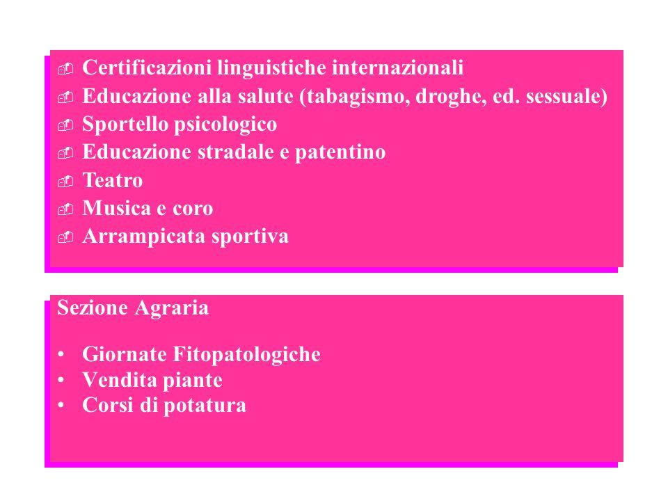 Certificazioni linguistiche internazionali Educazione alla salute (tabagismo, droghe, ed. sessuale) Sportello psicologico Educazione stradale e patent