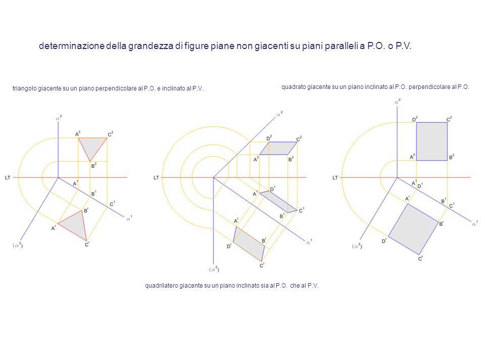 determinazione della grandezza di figure piane non giacenti su piani paralleli a P.O. o P.V. triangolo giacente su un piano perpendicolare al P.O. e i