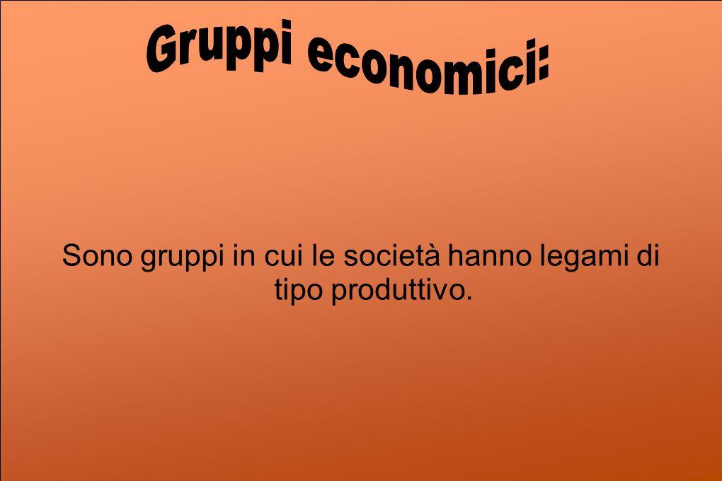 Sono gruppi in cui le società hanno legami di tipo produttivo.