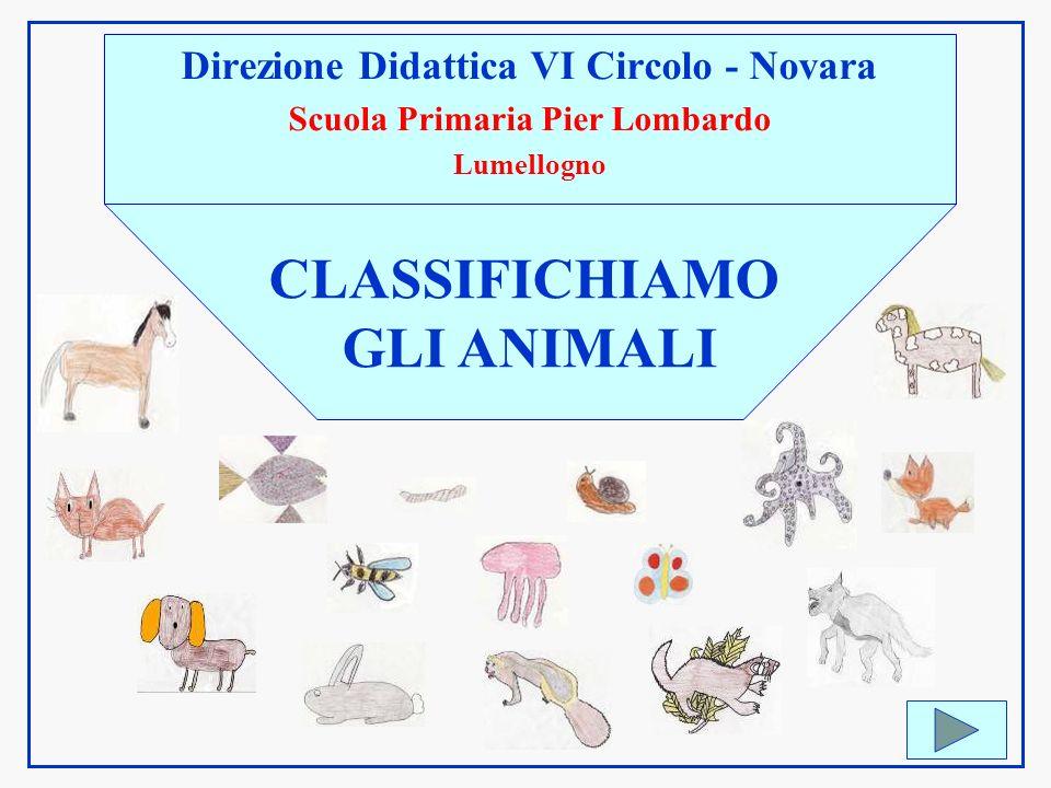 Direzione Didattica VI Circolo - Novara Scuola Primaria Pier Lombardo Lumellogno CLASSIFICHIAMO GLI ANIMALI
