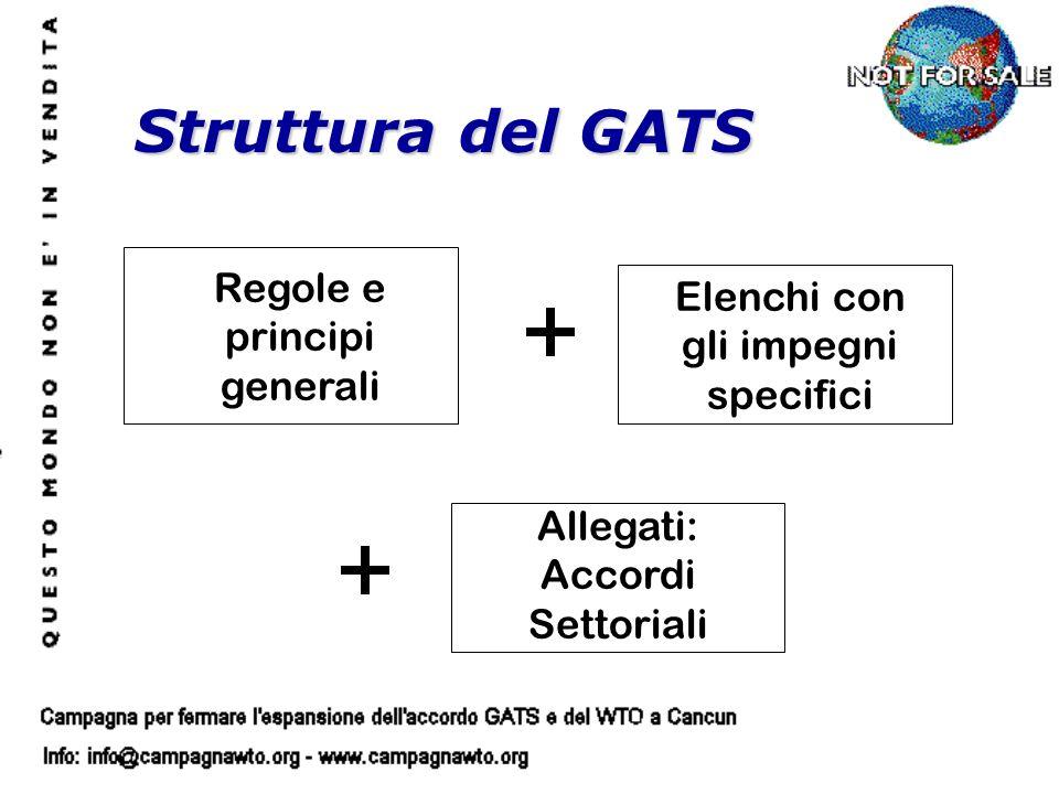 Regole e principi generali Elenchi con gli impegni specifici Allegati: Accordi Settoriali Struttura del GATS