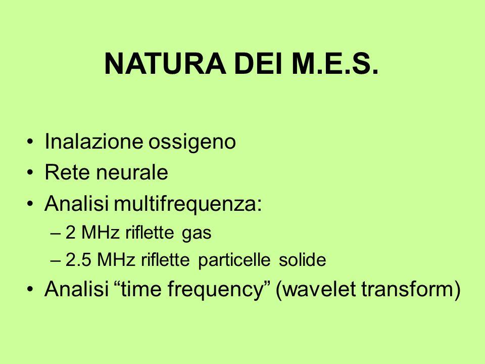 NATURA DEI M.E.S. Inalazione ossigeno Rete neurale Analisi multifrequenza: –2 MHz riflette gas –2.5 MHz riflette particelle solide Analisi time freque