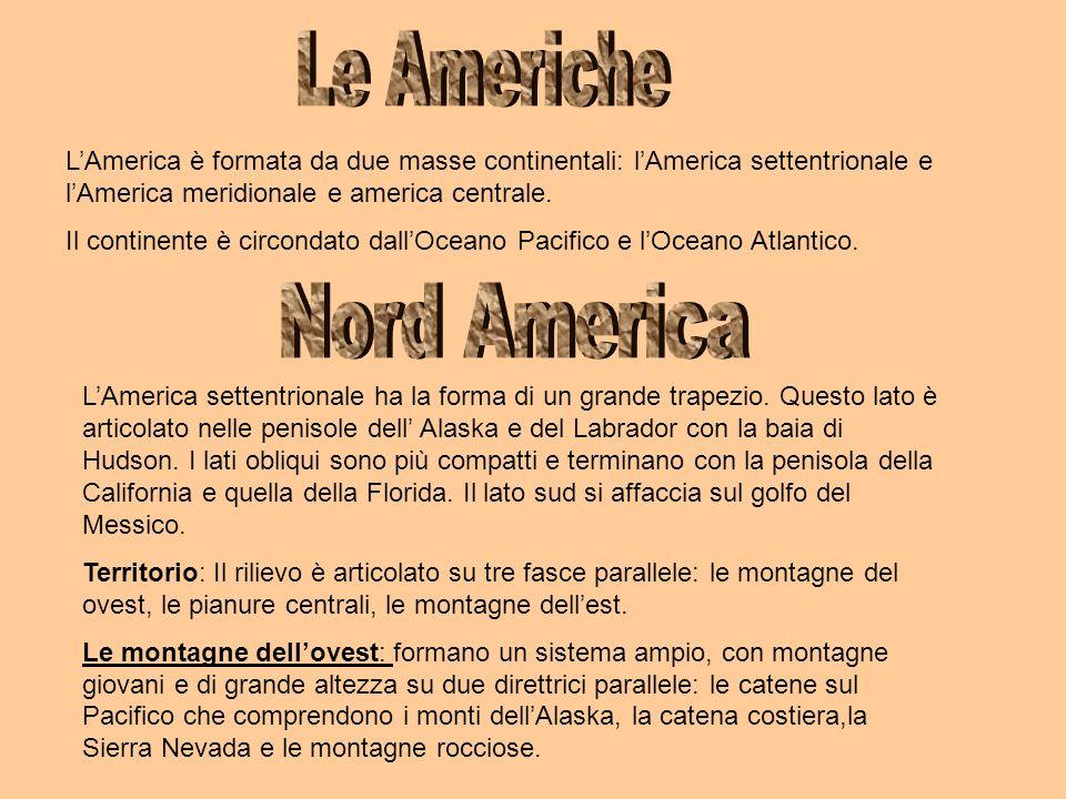 LAmerica è formata da due masse continentali: lAmerica settentrionale e lAmerica meridionale e america centrale. Il continente è circondato dallOceano