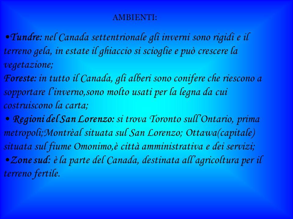 Tundre: nel Canada settentrionale gli inverni sono rigidi e il terreno gela, in estate il ghiaccio si scioglie e può crescere la vegetazione; Foreste: in tutto il Canada, gli alberi sono conifere che riescono a sopportare linverno,sono molto usati per la legna da cui costruiscono la carta; Regioni del San Lorenzo: si trova Toronto sullOntario, prima metropoli;Montrèal situata sul San Lorenzo; Ottawa(capitale) situata sul fiume Omonimo,è città amministrativa e dei servizi; Zone sud: è la parte del Canada, destinata allagricoltura per il terreno fertile.