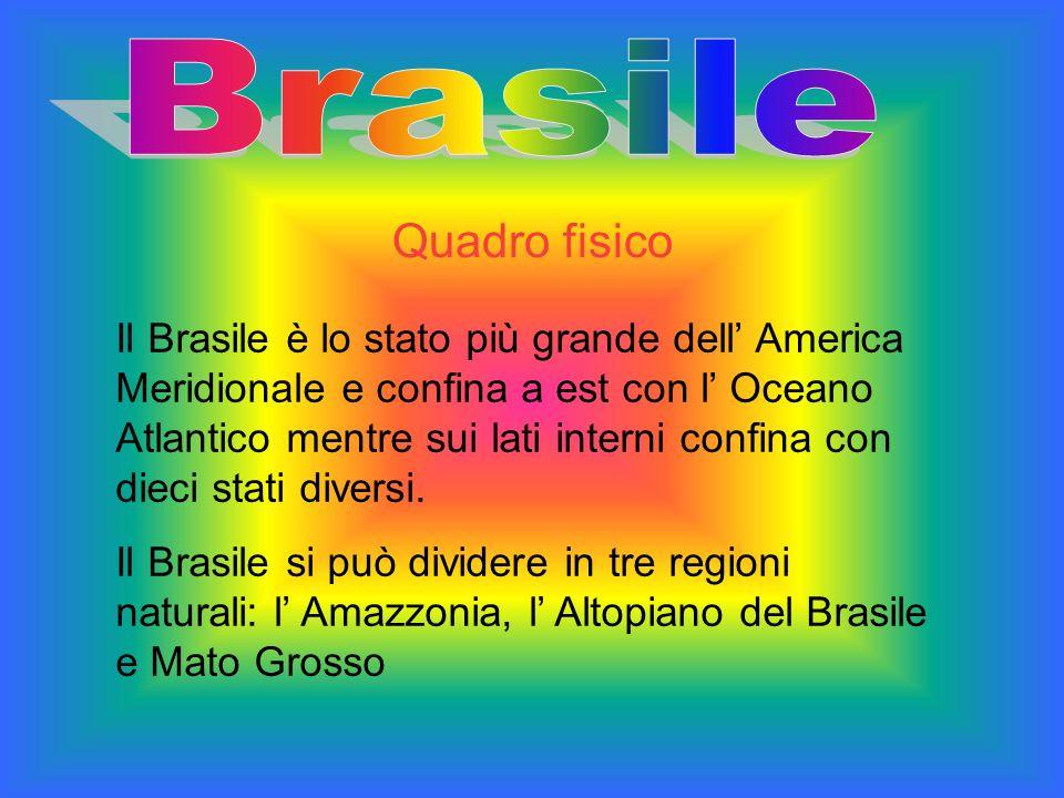 Il Brasile è lo stato più grande dell America Meridionale e confina a est con l Oceano Atlantico mentre sui lati interni confina con dieci stati diver