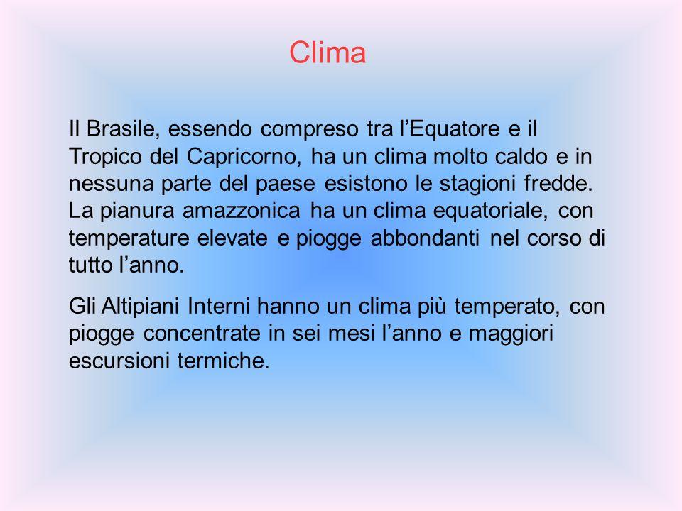 Clima Il Brasile, essendo compreso tra lEquatore e il Tropico del Capricorno, ha un clima molto caldo e in nessuna parte del paese esistono le stagion