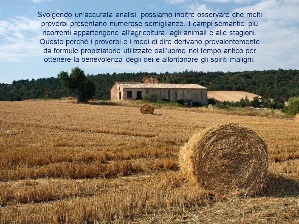 Et tous les chemins mènent à Rome E perché secondo voi esistono radici comuni tra i proverbi appartenenti alle differenti lingue analizzate.