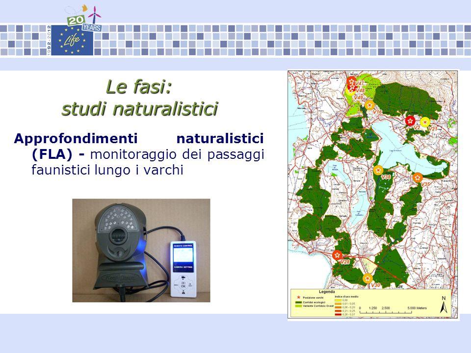 Le fasi: studi naturalistici Approfondimenti naturalistici (FLA) - monitoraggio dei passaggi faunistici lungo i varchi