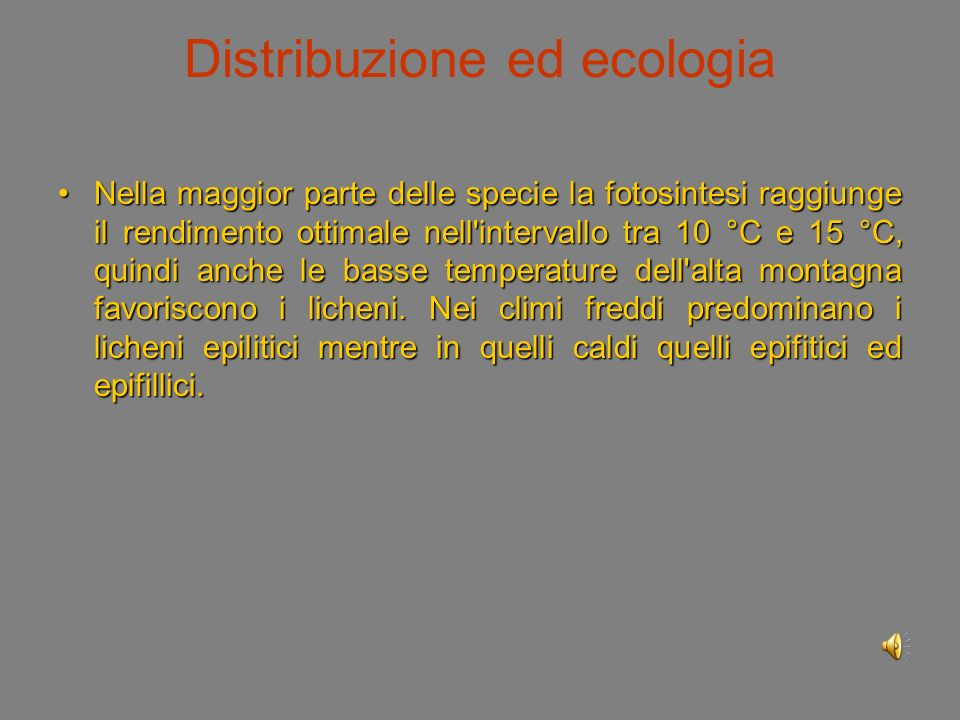 Distribuzione ed ecologia I licheni assorbono sufficiente umidità assumendola dall aria e dalla rugiada mattutina.