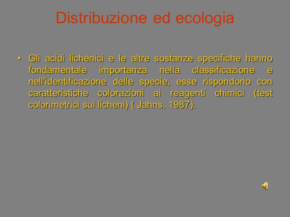 Distribuzione ed ecologia L importanza ecologica dei licheni risiede soprattutto nella capacità di insediarsi sulla nuda roccia, di solubilizzarla coi prodotti delle loro secrezioni (acidi lichenici) e di penetrare nelle rocce con le ife provocandone la corrosione e la disgregazione.