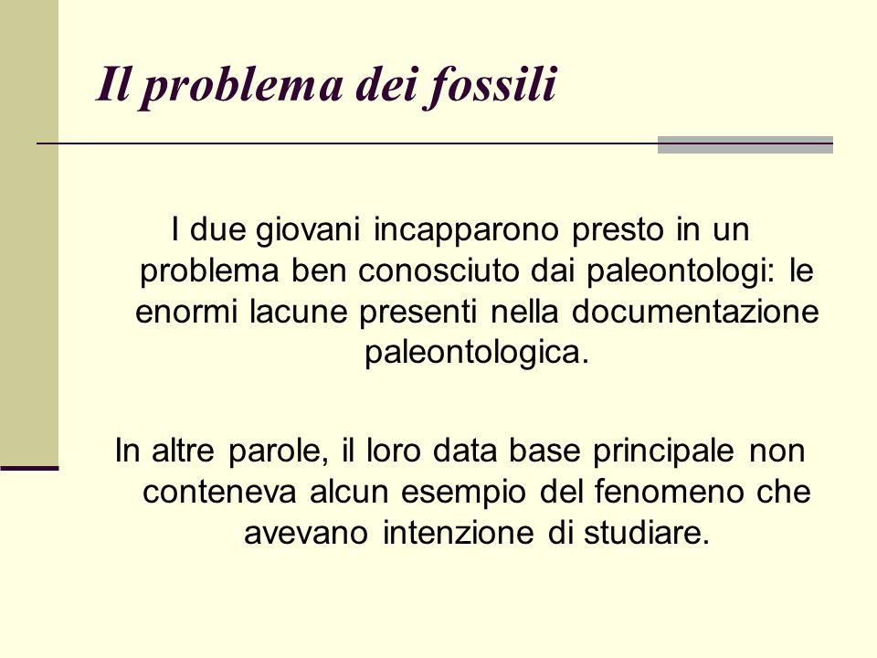 Il problema dei fossili I due giovani incapparono presto in un problema ben conosciuto dai paleontologi: le enormi lacune presenti nella documentazione paleontologica.