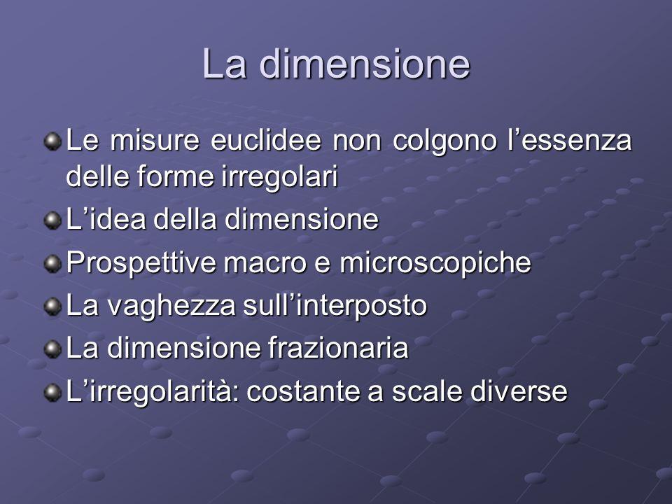 La dimensione Le misure euclidee non colgono lessenza delle forme irregolari Lidea della dimensione Prospettive macro e microscopiche La vaghezza sull