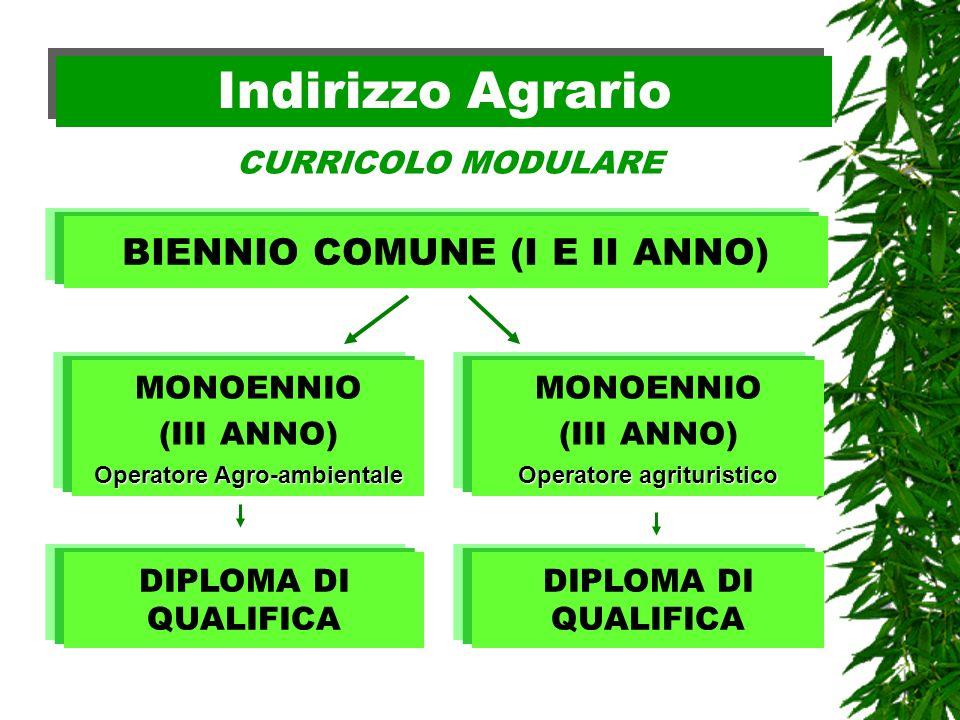 Indirizzo Agrario BIENNIO COMUNE (I E II ANNO) CURRICOLO MODULARE MONOENNIO (III ANNO) Operatore Agro-ambientale DIPLOMA DI QUALIFICA MONOENNIO (III A