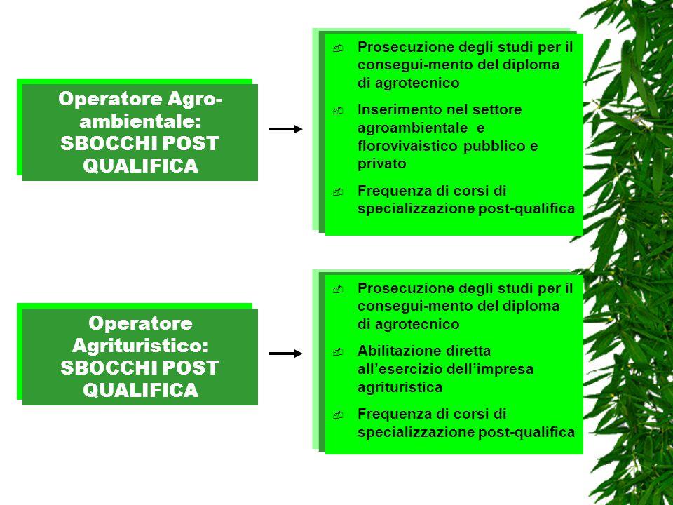 Prosecuzione degli studi per il consegui-mento del diploma di agrotecnico Inserimento nel settore agroambientale e florovivaistico pubblico e privato
