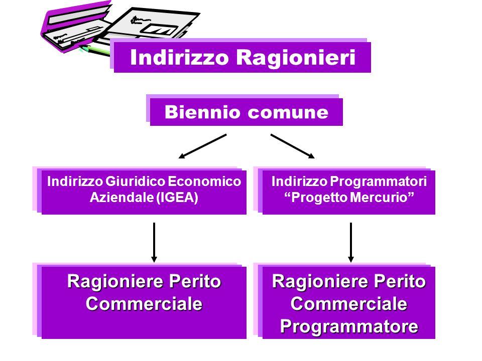 Biennio comune Indirizzo Programmatori Progetto Mercurio Indirizzo Giuridico Economico Aziendale (IGEA) Ragioniere Perito Commerciale Ragioniere Perit