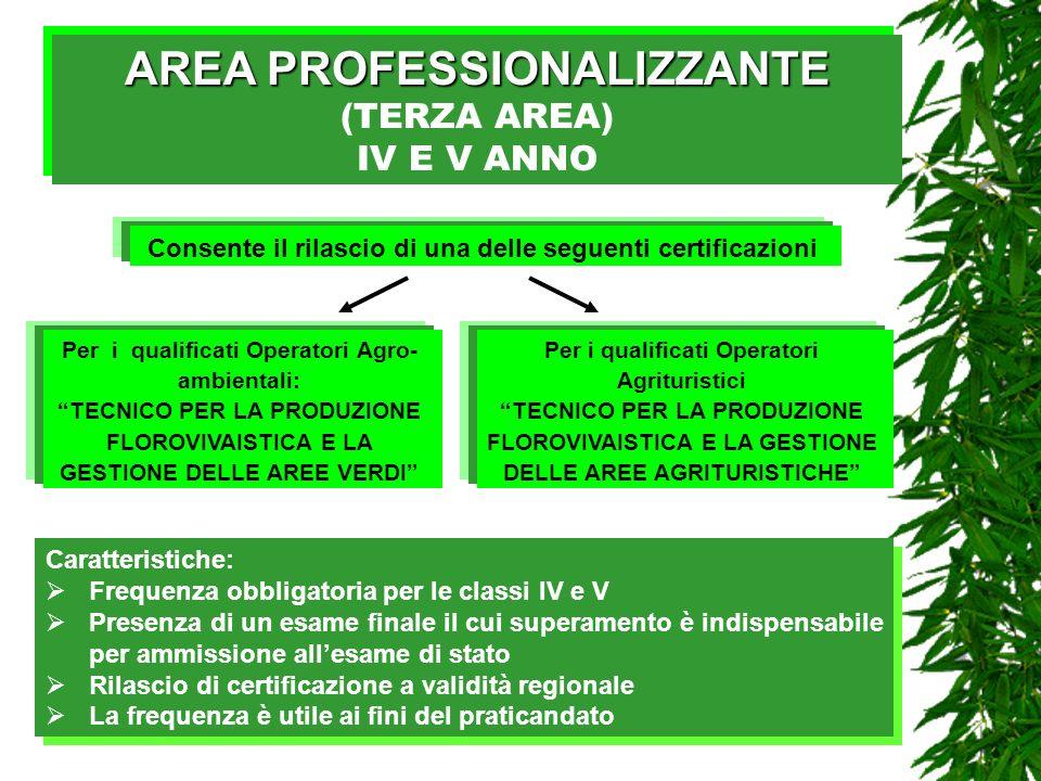AREA PROFESSIONALIZZANTE AREA PROFESSIONALIZZANTE (TERZA AREA) IV E V ANNO AREA PROFESSIONALIZZANTE AREA PROFESSIONALIZZANTE (TERZA AREA) IV E V ANNO