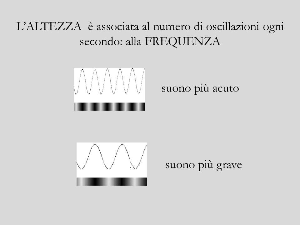Il suono lo distinguiamo principalmente in base a tre caratteristiche: ALTEZZA INTENSITA TIMBRO
