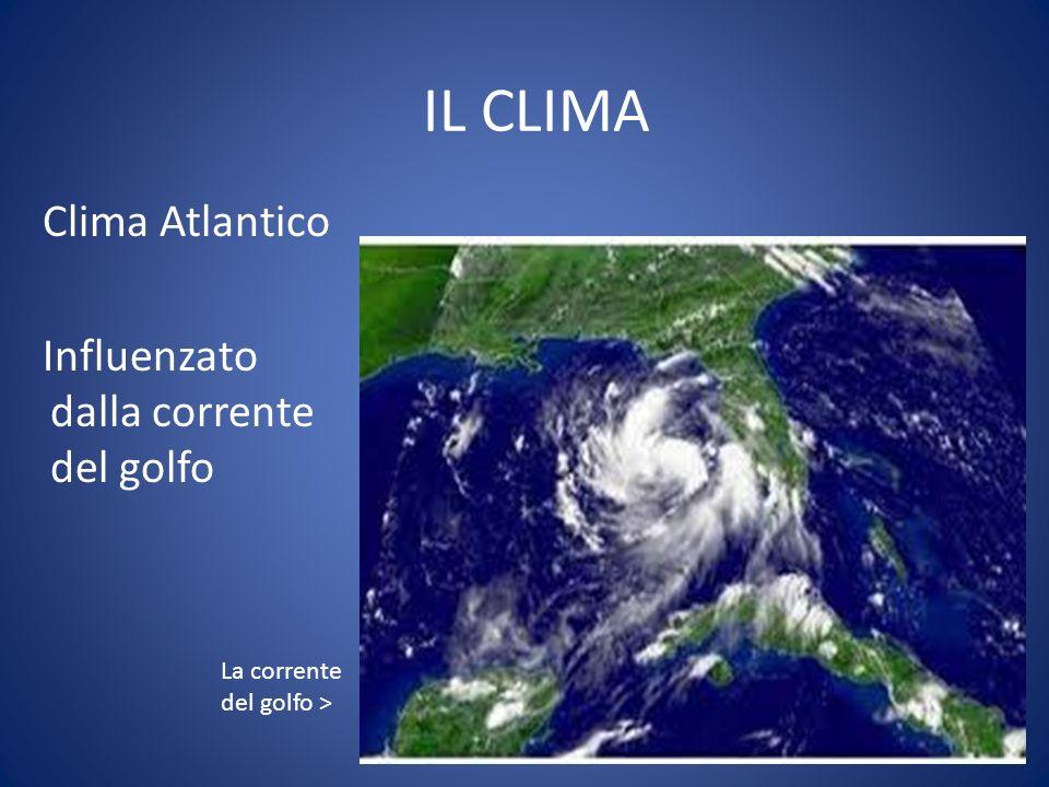 IL CLIMA Clima Atlantico Influenzato dalla corrente del golfo La corrente del golfo >