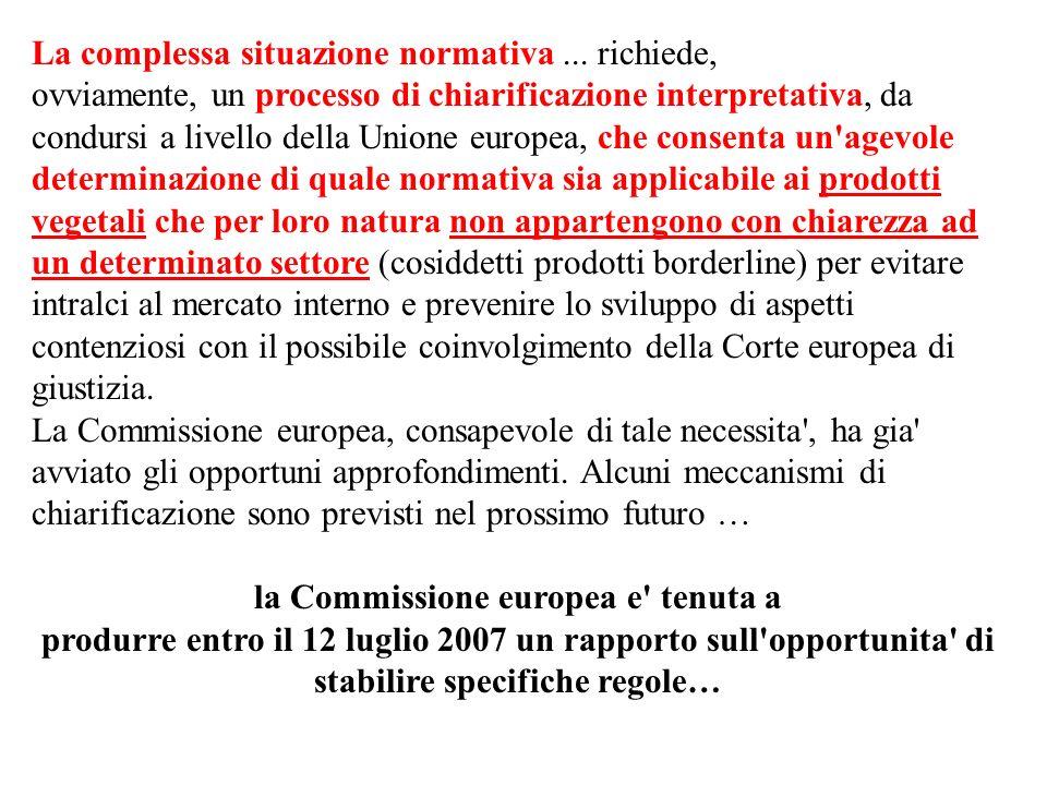 La complessa situazione normativa... richiede, ovviamente, un processo di chiarificazione interpretativa, da condursi a livello della Unione europea,