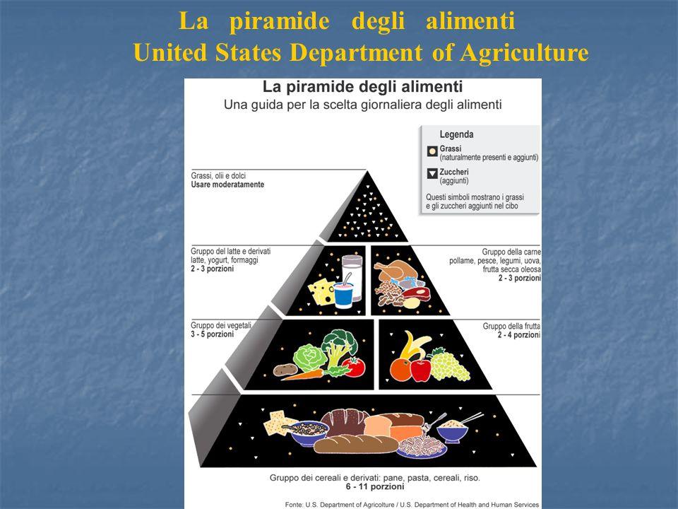 La piramide degli alimenti United States Department of Agriculture