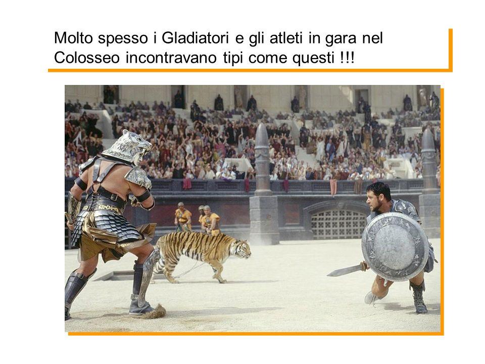 Molto spesso i Gladiatori e gli atleti in gara nel Colosseo incontravano tipi come questi !!!