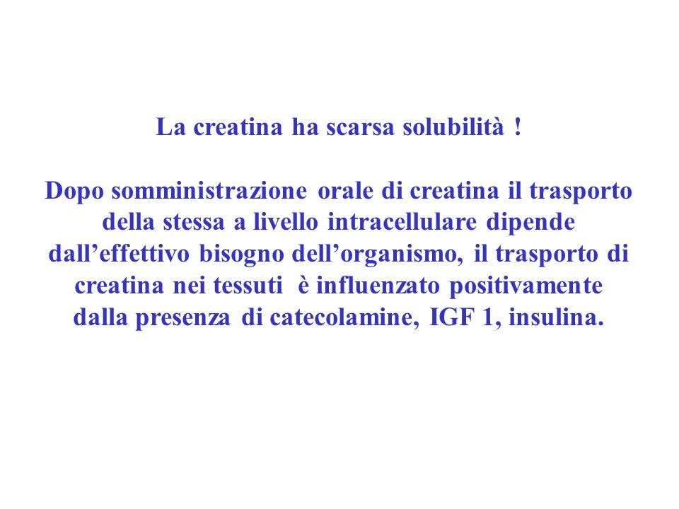La creatina ha scarsa solubilità ! Dopo somministrazione orale di creatina il trasporto della stessa a livello intracellulare dipende dalleffettivo bi