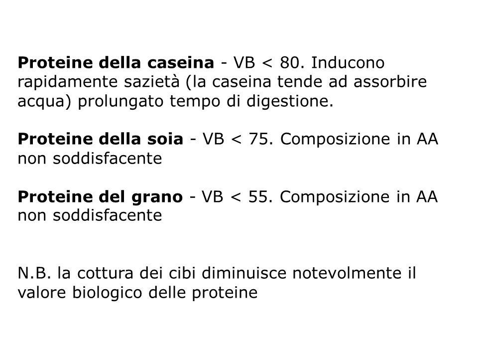 Proteine della caseina - VB < 80. Inducono rapidamente sazietà (la caseina tende ad assorbire acqua) prolungato tempo di digestione. Proteine della so