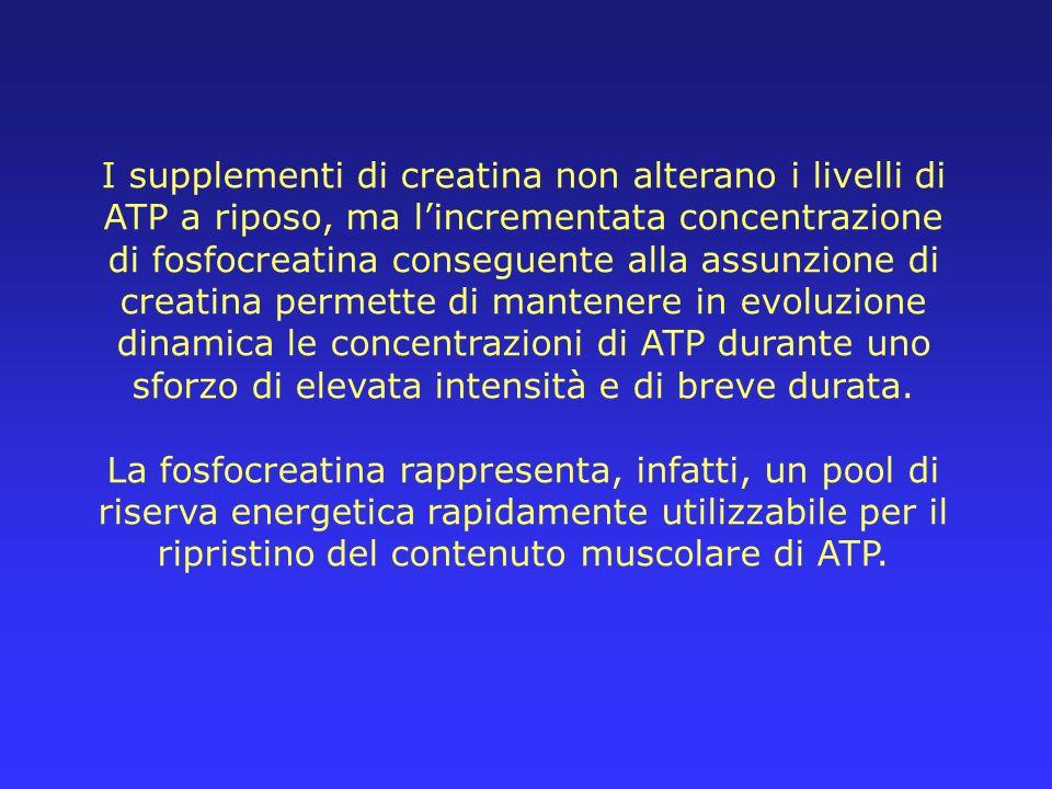 I supplementi di creatina non alterano i livelli di ATP a riposo, ma lincrementata concentrazione di fosfocreatina conseguente alla assunzione di crea