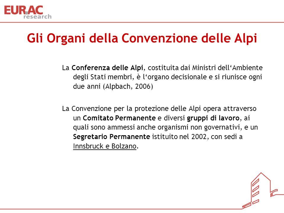 Gli Organi della Convenzione delle Alpi La Conferenza delle Alpi, costituita dai Ministri dellAmbiente degli Stati membri, è lorgano decisionale e si