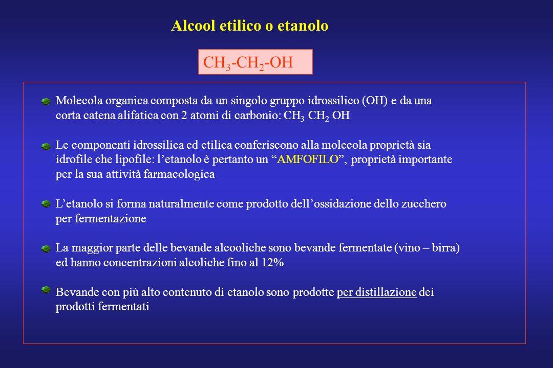 Alcool etilico o etanolo CH 3 -CH 2 -OH Molecola organica composta da un singolo gruppo idrossilico (OH) e da una corta catena alifatica con 2 atomi d