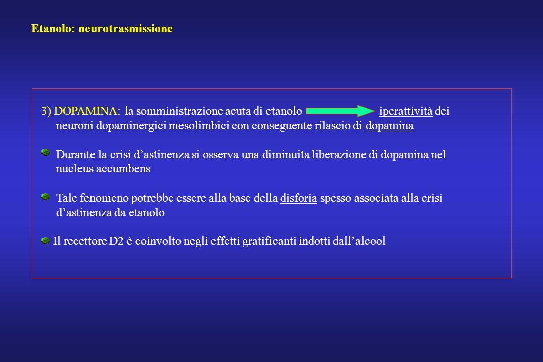 Etanolo: neurotrasmissione 3) DOPAMINA: la somministrazione acuta di etanolo iperattività dei neuroni dopaminergici mesolimbici con conseguente rilasc