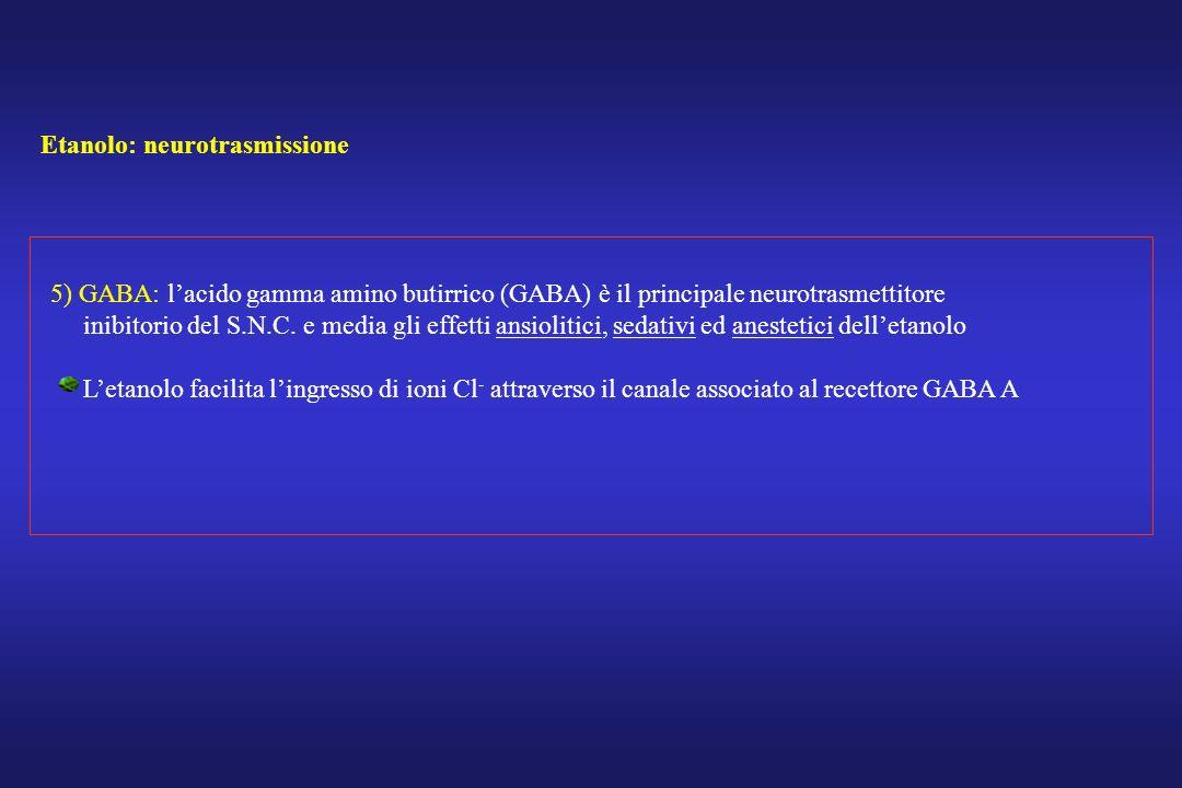 Etanolo: neurotrasmissione 5) GABA: lacido gamma amino butirrico (GABA) è il principale neurotrasmettitore inibitorio del S.N.C. e media gli effetti a