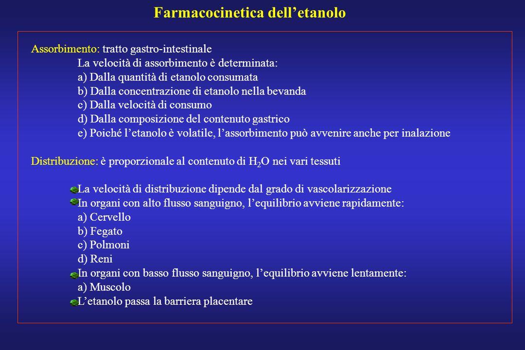 Farmacocinetica delletanolo Assorbimento: tratto gastro-intestinale La velocità di assorbimento è determinata: a) Dalla quantità di etanolo consumata