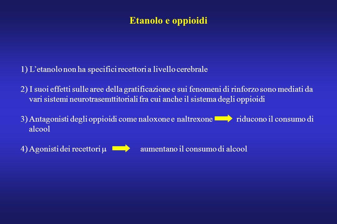 Etanolo e oppioidi 1) Letanolo non ha specifici recettori a livello cerebrale 2) I suoi effetti sulle aree della gratificazione e sui fenomeni di rinf