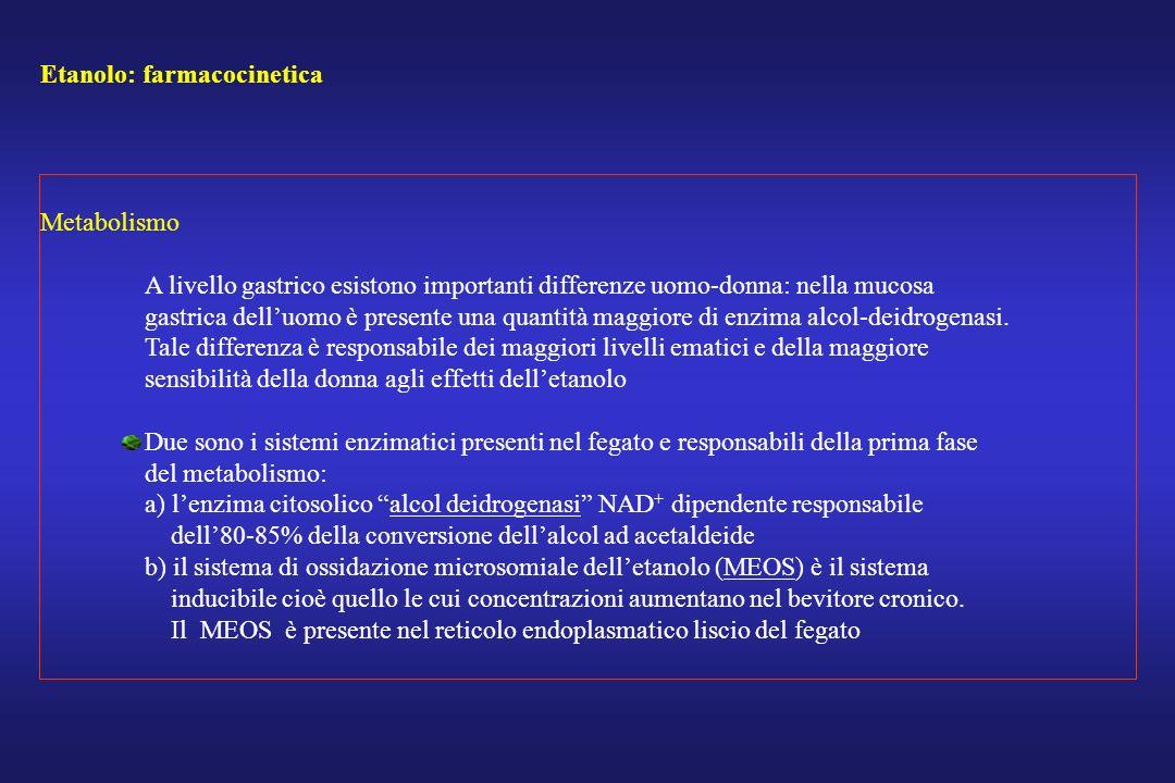 Etanolo: farmacocinetica Metabolismo A livello gastrico esistono importanti differenze uomo-donna: nella mucosa gastrica delluomo è presente una quant