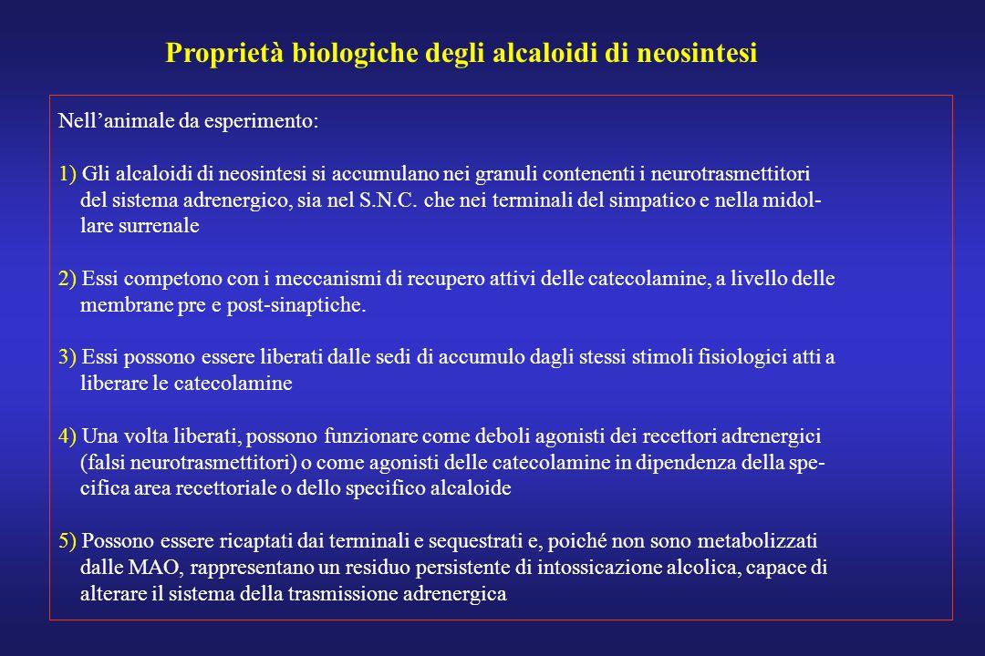 Proprietà biologiche degli alcaloidi di neosintesi Nellanimale da esperimento: 1) Gli alcaloidi di neosintesi si accumulano nei granuli contenenti i n