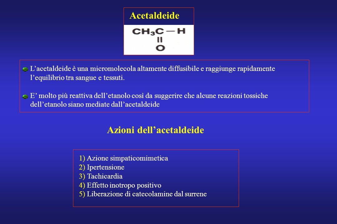 Acetaldeide Lacetaldeide è una micromolecola altamente diffusibile e raggiunge rapidamente lequilibrio tra sangue e tessuti. E molto più reattiva dell