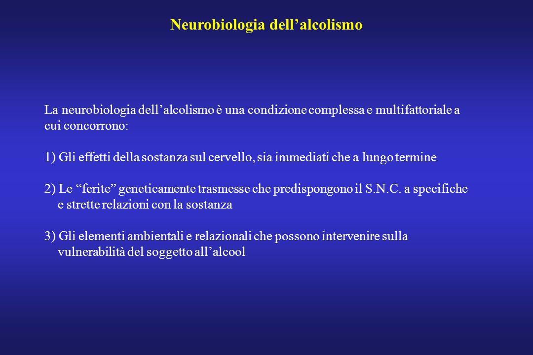 Neurobiologia dellalcolismo La neurobiologia dellalcolismo è una condizione complessa e multifattoriale a cui concorrono: 1) Gli effetti della sostanz