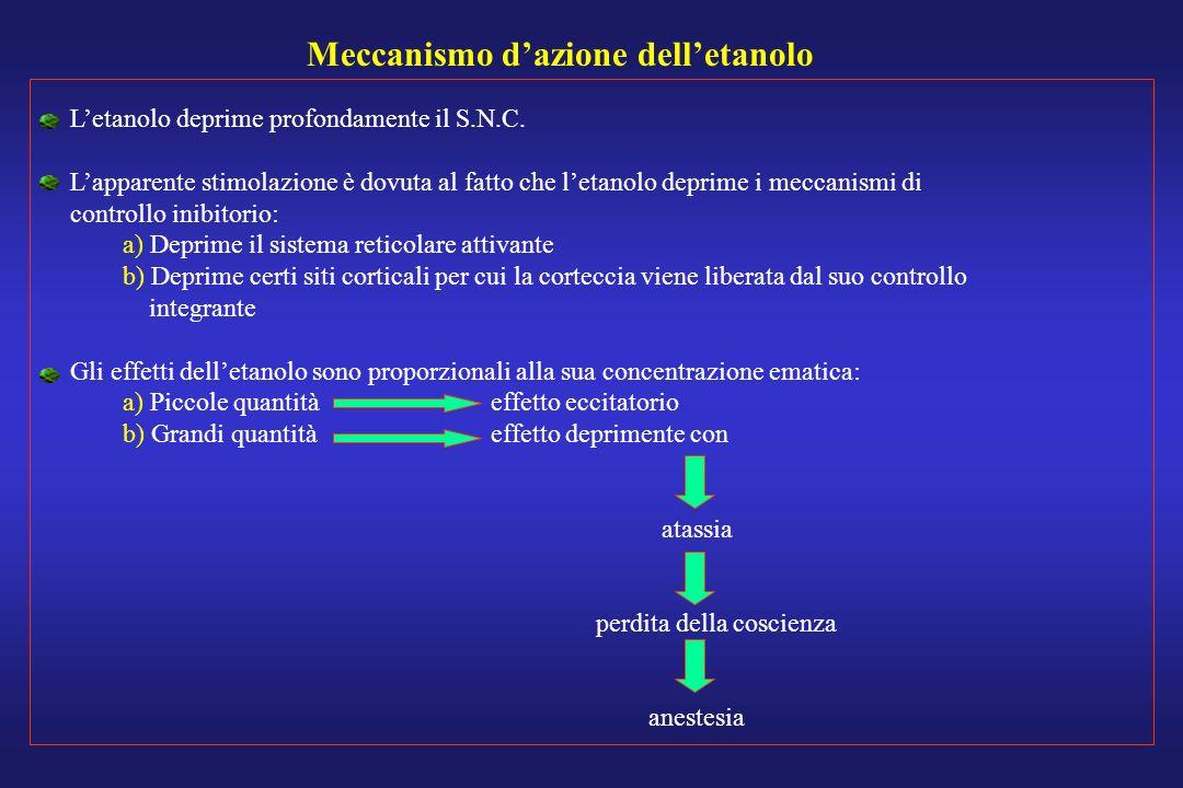 Meccanismo dazione delletanolo Letanolo deprime profondamente il S.N.C. Lapparente stimolazione è dovuta al fatto che letanolo deprime i meccanismi di