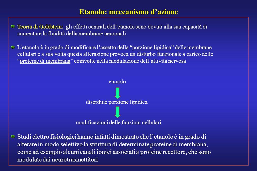 Etanolo: meccanismo dazione Teoria di Goldstein: gli effetti centrali delletanolo sono dovuti alla sua capacità di aumentare la fluidità della membran