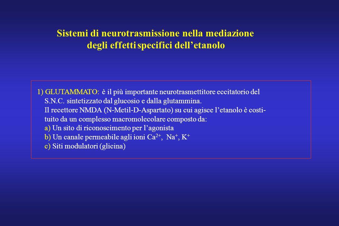 Sistemi di neurotrasmissione nella mediazione degli effetti specifici delletanolo 1) GLUTAMMATO: è il più importante neurotrasmettitore eccitatorio de