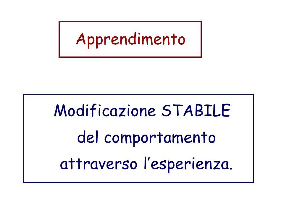 Apprendimento Modificazione STABILE del comportamento attraverso lesperienza.