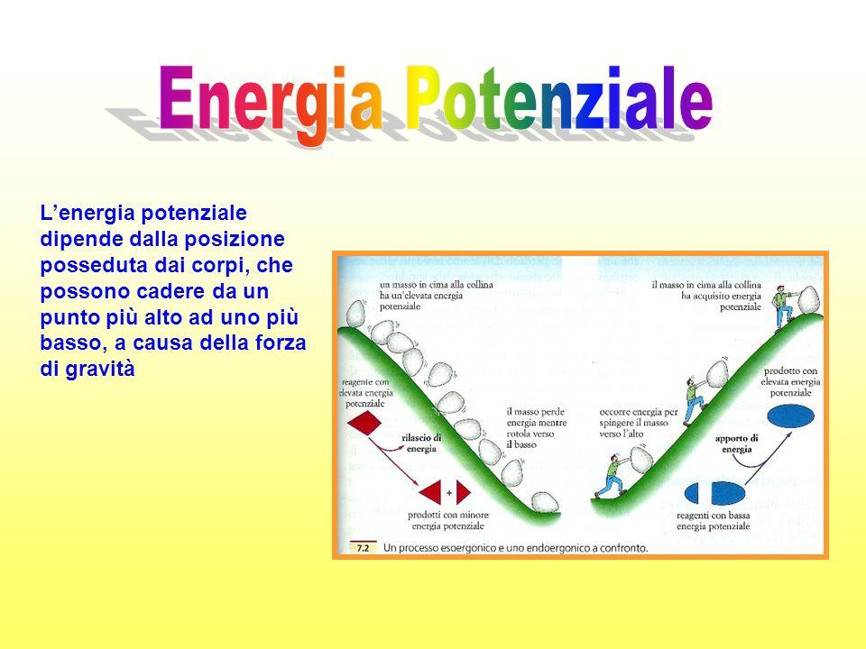 Lenergia potenziale dipende dalla posizione posseduta dai corpi, che possono cadere da un punto più alto ad uno più basso, a causa della forza di gravità